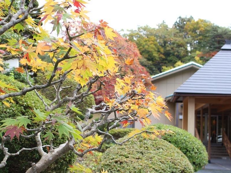 紅葉 2019.10.26.jpg