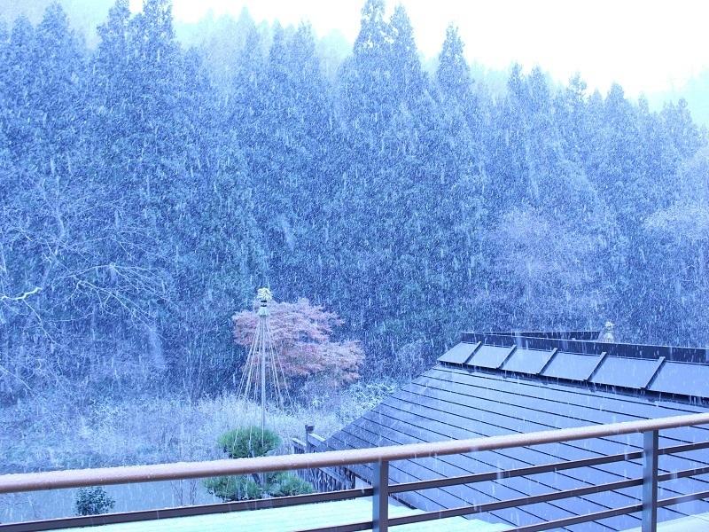 雪 2019.11.29.jpg